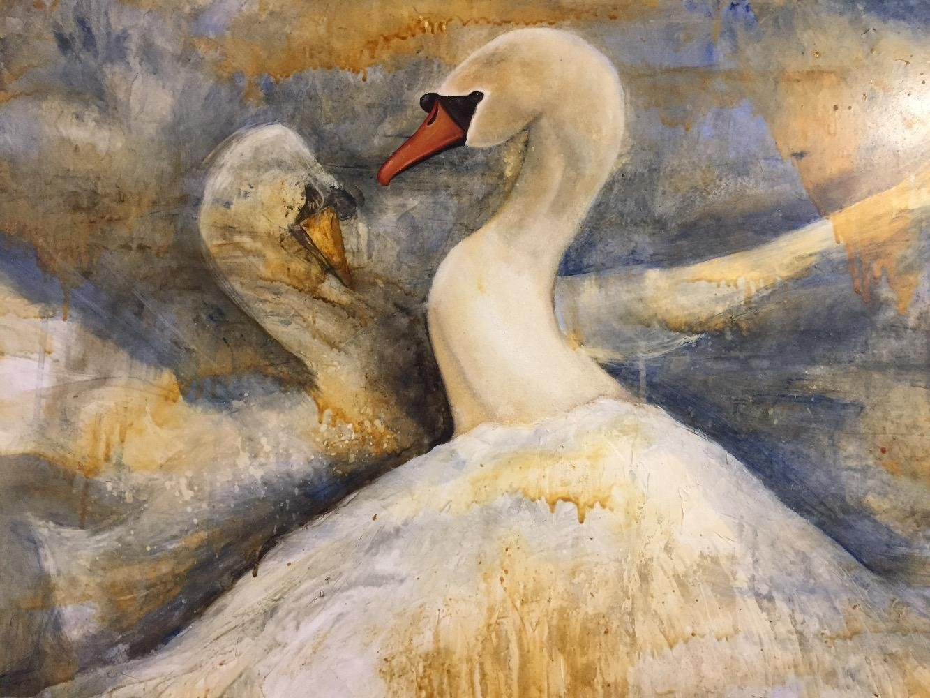 The swan couple