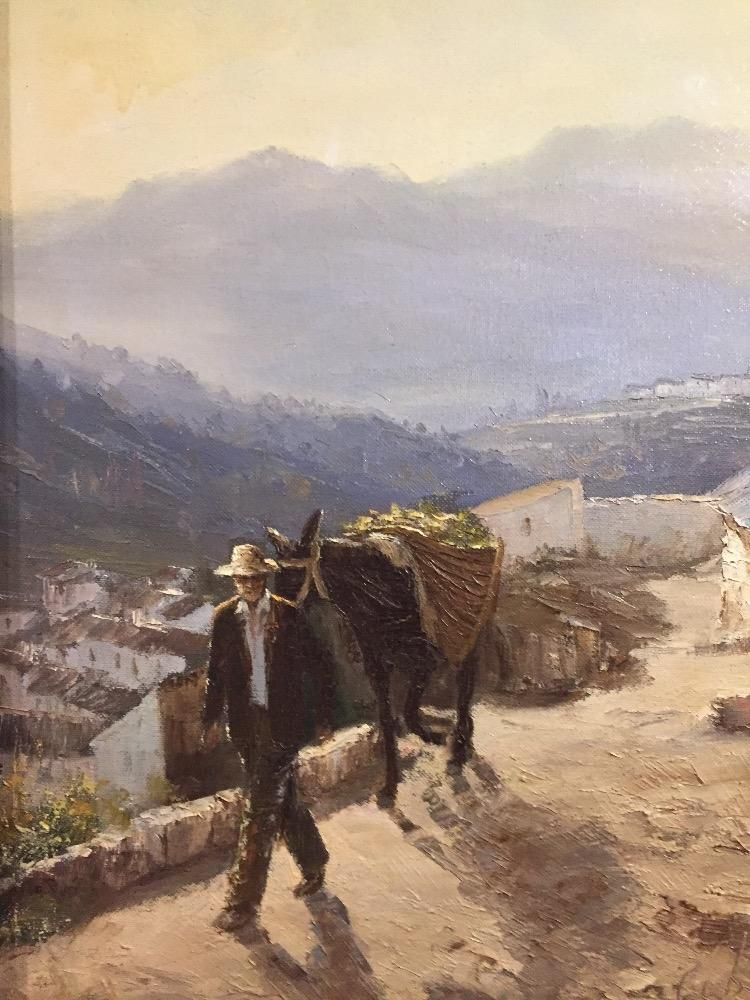 Spanish man with his donkey